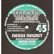 Rootz Dimensionz - Negus Nagast
