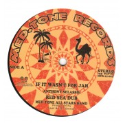 Anthony Selassie - If It Wasn't For Jah