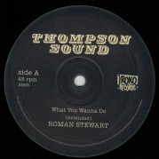 Roman Stewart - What You Wanna Do