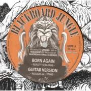 Reality Souljahs - Born Again