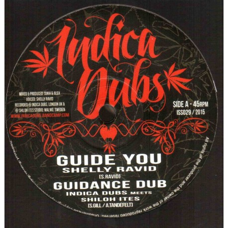 Shelly Ravid - Guide You