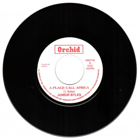 Junior Byles - A Place Call Africa