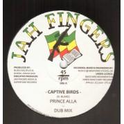 Prince Alla - Captive Birds