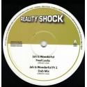 Fred Lock - Jah is Wonderful