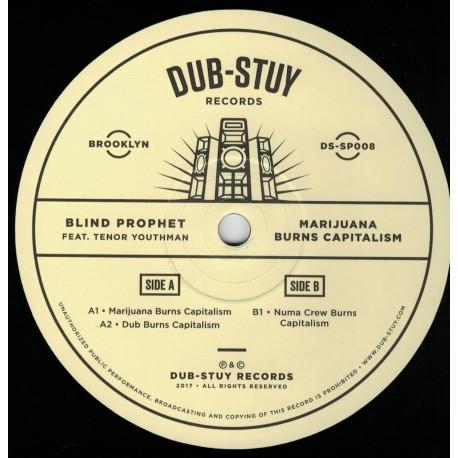 Blind Prophet ft. Tenor Youthman - Marijuana Burns Capitalism