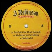 J.Robinson Feat Micah Shemaiah - True Spirit