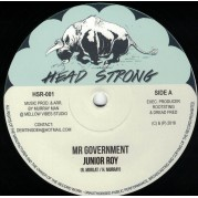 Junior Roy - Mr Government