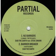 Dub The Earth feat. Steve Swann - No Barriers