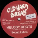 Sound Iration - Melody Roots