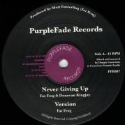Fat Frog ft. Donovan Kingjay - Never Giving Up