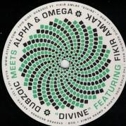 Fikir Amlak - Divine