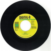 Sizzla - Got It Right There