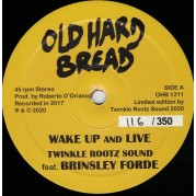 Twinkle Rootz Sound feat. Brinsley Forde - Wake Up And Live