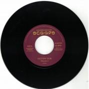 Vibronics - History Dub