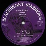 Fikir Amlak meets Brizion - Levi