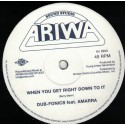 Dub-Fonics feat. Amarra - When You Get Right Down To It