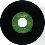 Vibronics meets The Bush Chemist feat. Singer Blue - If A No Jah