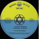 Wayne McArthur - Social Bonding