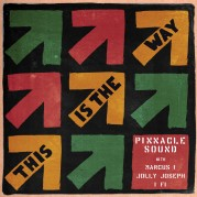 Pinnacle Sound- This Is The Way LP